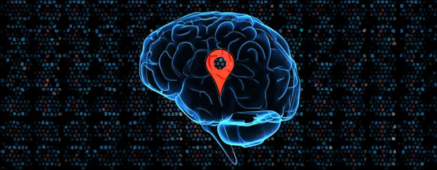 brain-map-locator